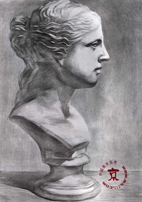 维纳斯石膏素描步骤图展示