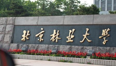 2013年北京林业大学艺术类美术高考录取分数线