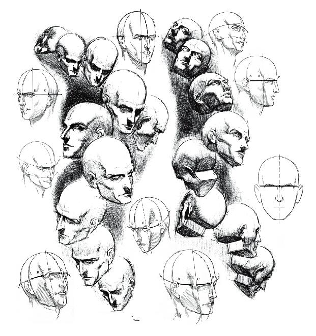 透视   头部通过颈部的运动,可以前俯后仰、左右转动。随着空间的变化及我们观察对象时的视线高低与视角的变化,头部及五官位置之间便产生了各种透视现象。如头前俯,则头顶扩大,面部及五官缩短,下颌面比例加大。头的不断转动便产生了各种透视弧线的变化。   把握这些透视变化,我们首先应确定头部中线、五官辅助线,再以此出发去把握头部运动规律。在把握这一规律时要注意以下几点:一是掌握透视变化规律,如近大远小,视线以上的东西近高远低,视线以下的东西近低远高等;二是了解头部的结构连贯性,头部运动引起结构透视变化,要依靠结