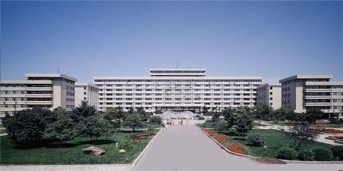 2013年东北农业大学艺术类专业合格分数线